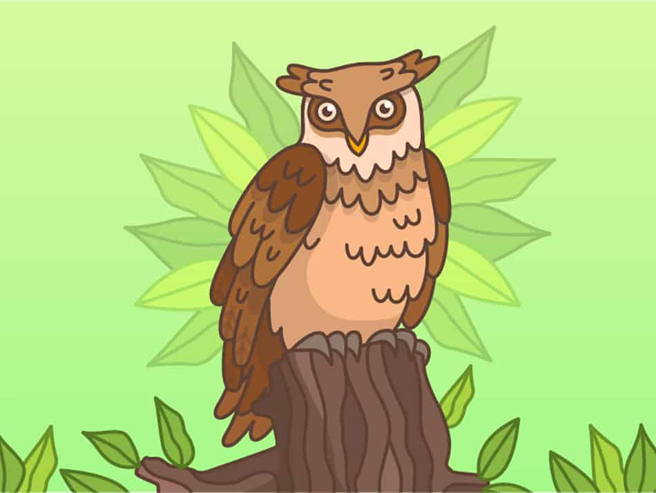 the Symbolism of Owls Mean
