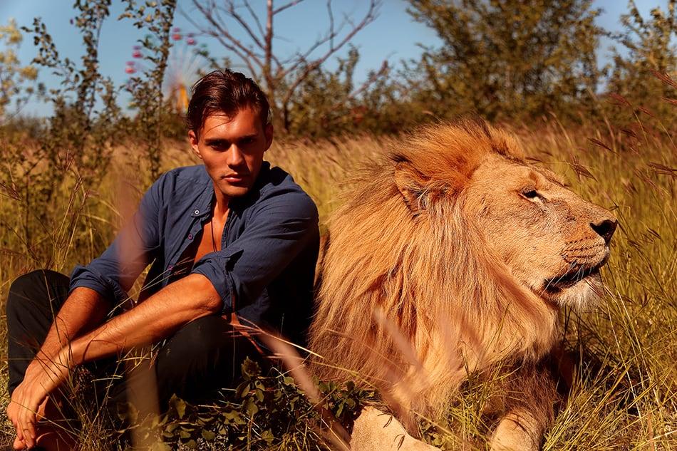 Dreams About Befriending a Lion