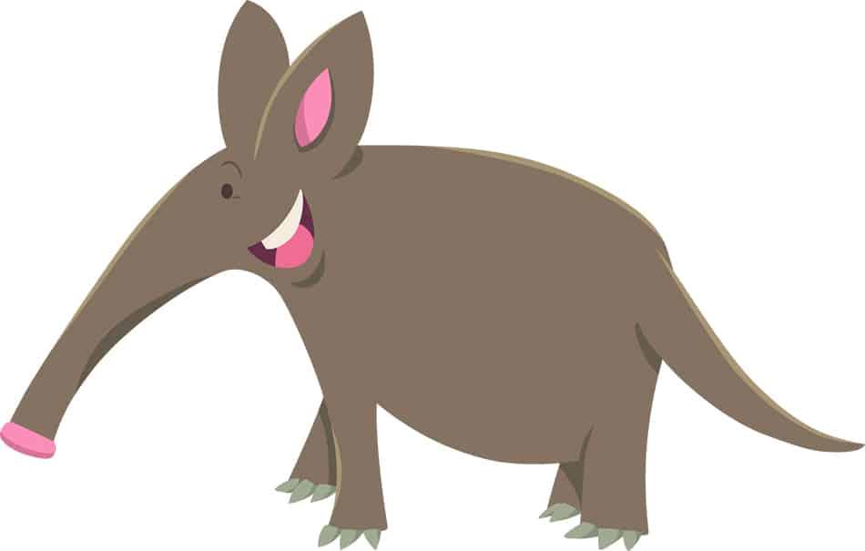 Aardvarkes Symbolize