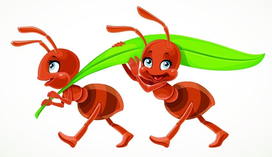 Ants Symbolize