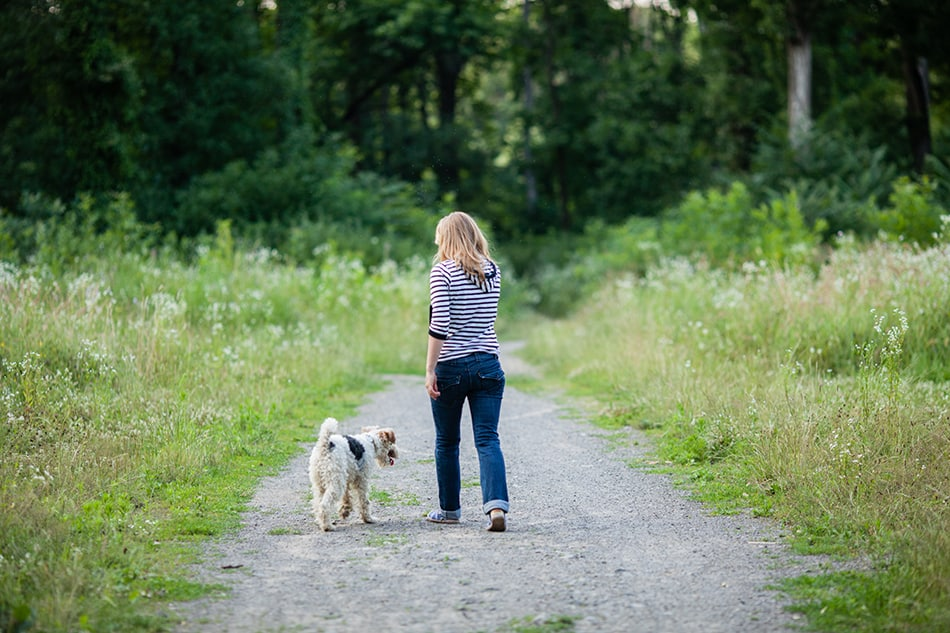 a dog following you