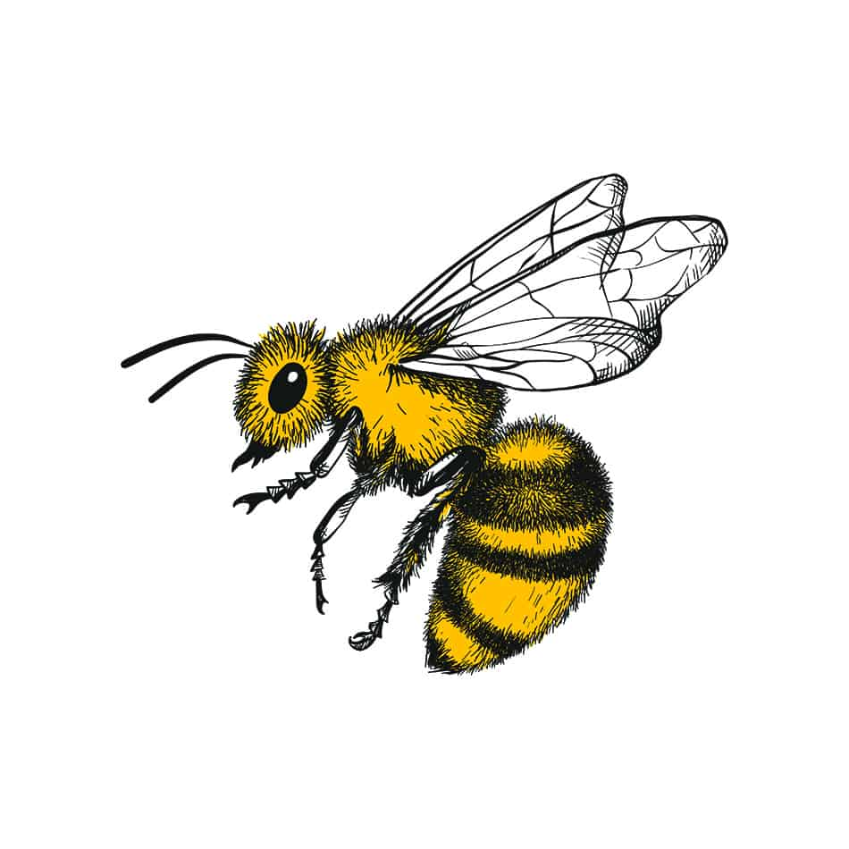 Bee Dream Symbolism