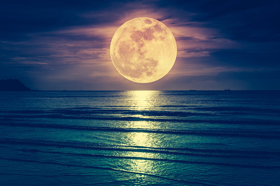 Dream About the Moon