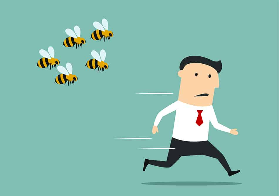 bees chasing you
