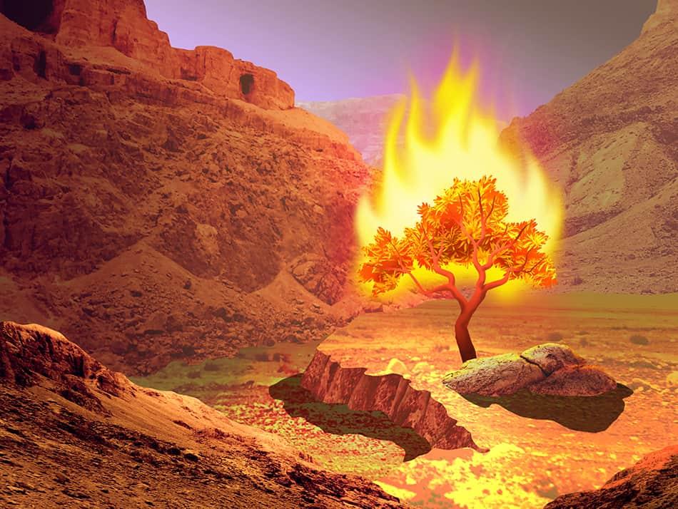 fires that do not burn