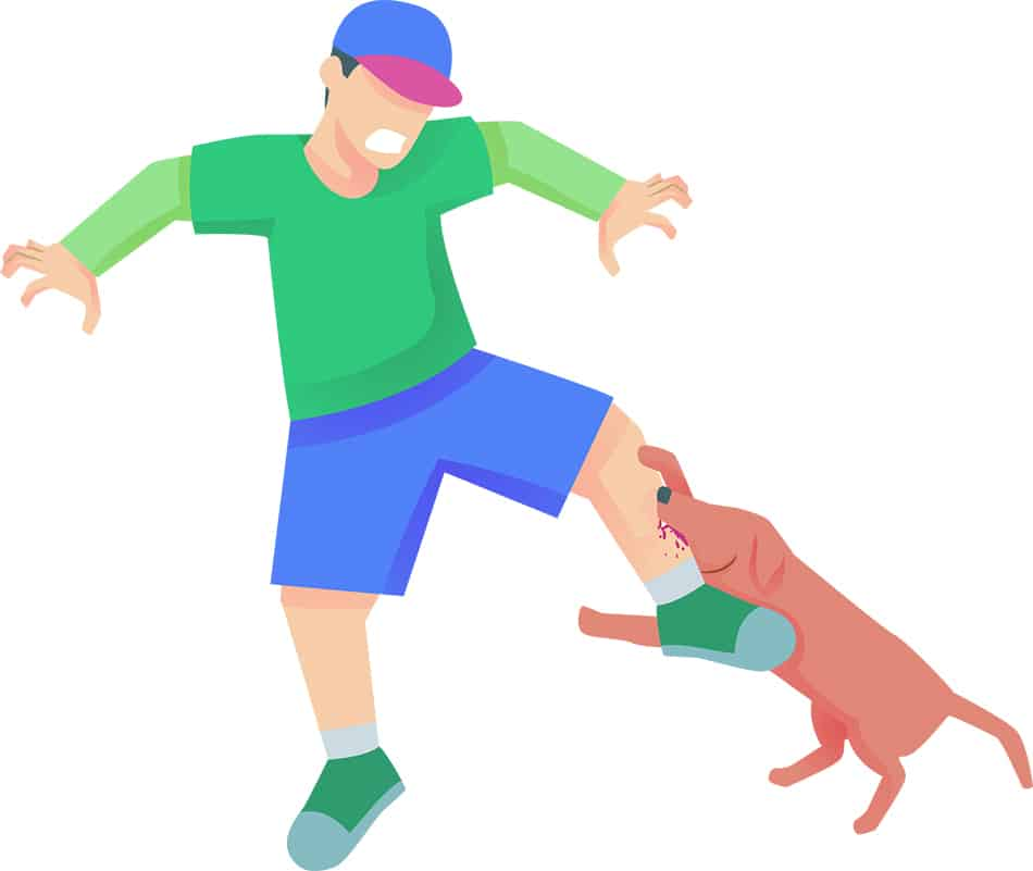Dog Attack Dream Symbolism