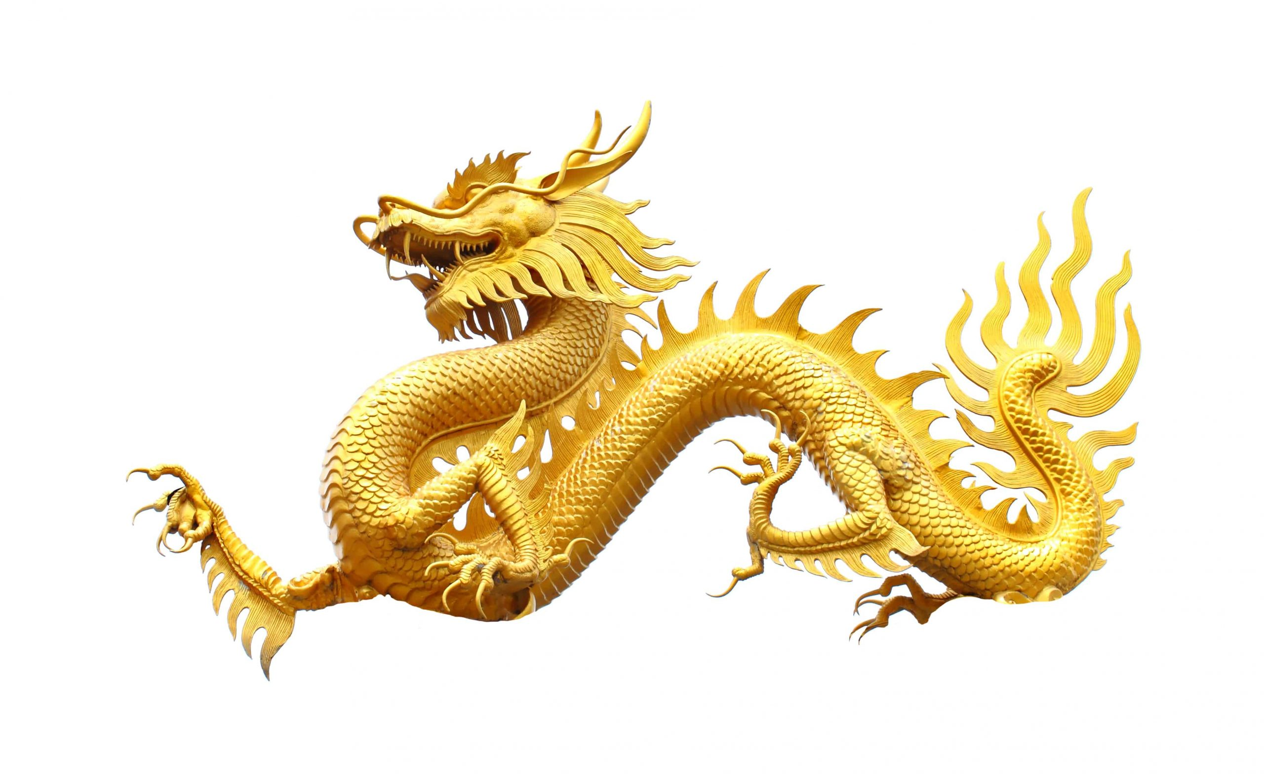 Yellow dragon dream meaning