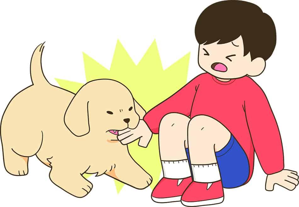 Dream of a dog biting a child