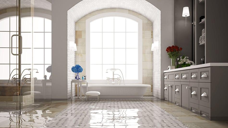Dream of a flooded bathroom