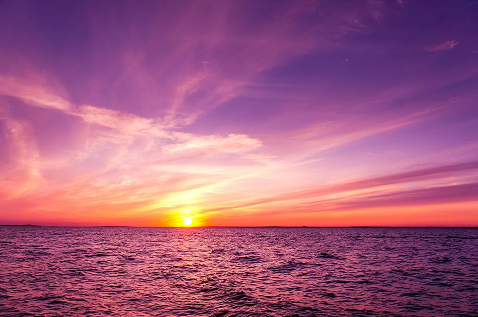 Dream About Purple Sunset