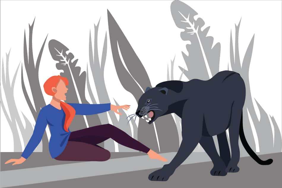 Dream of a black panther attacking you