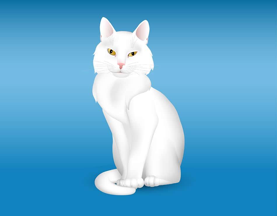 White Cat Dream Symbolism