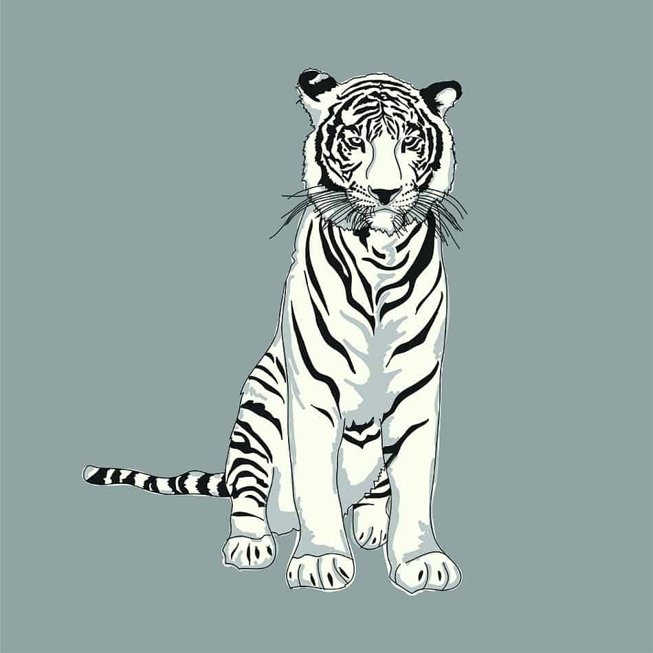 The Symbolism Of White Tiger