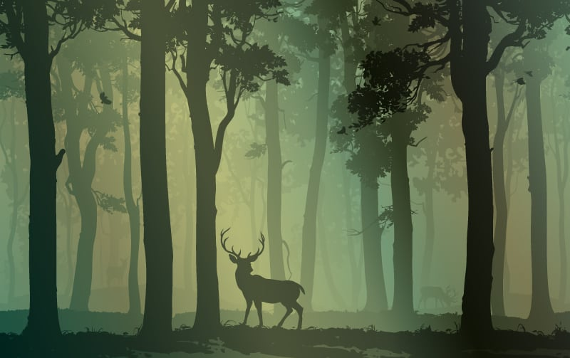 Deer or Reindeer Symbolism