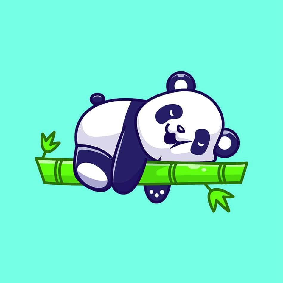 Panda Animal Symbolism