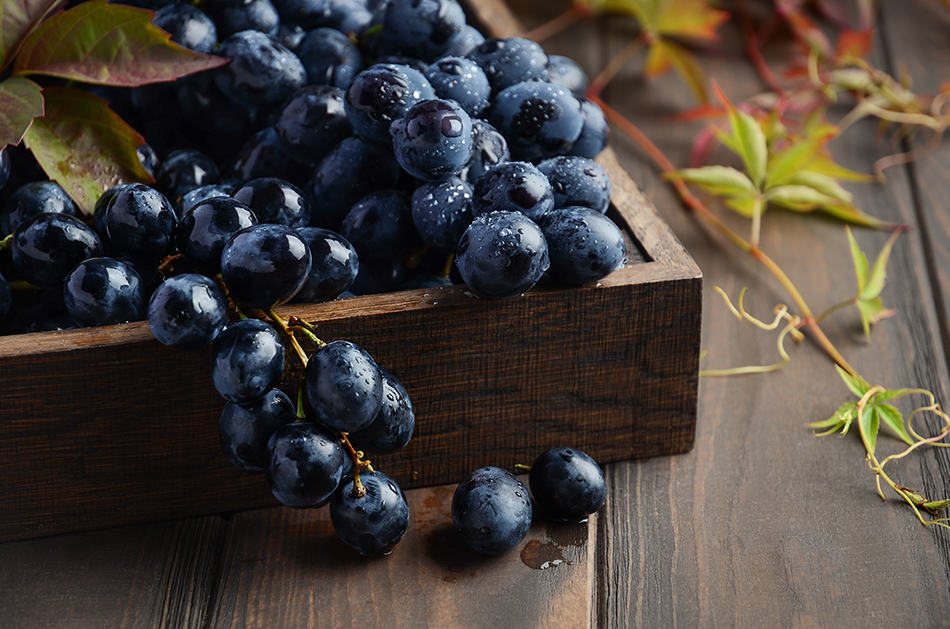 Dream of black grapes