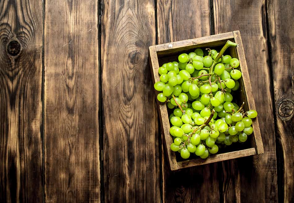 Dream of green grapes