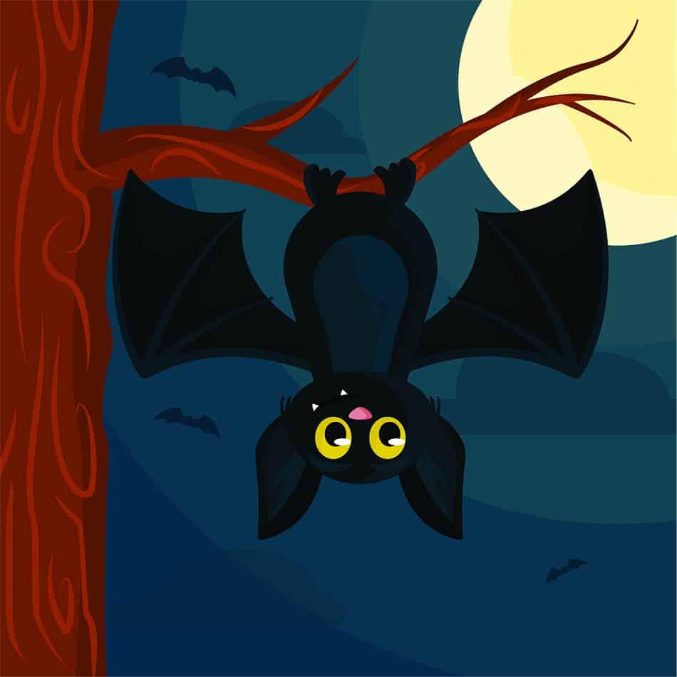Bat Dream Symbolism