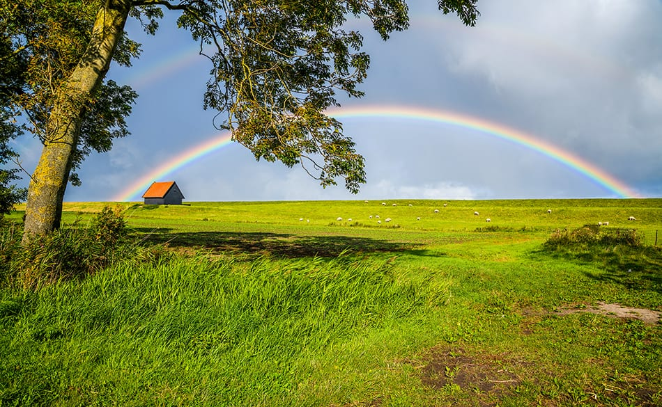 What Does It Mean to Dream of a Rainbow?