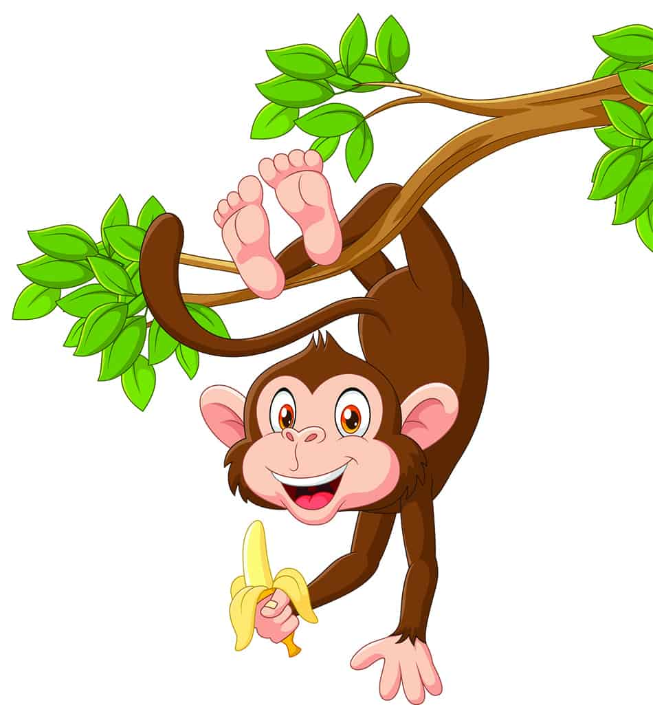 Monkey Dream Symbolism